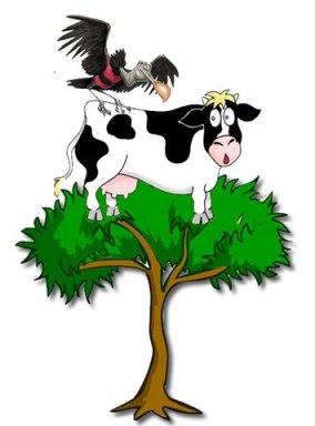 Vaca Flamengo